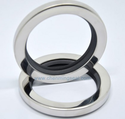 Dual Lip PTFE Oil Seals Stainless Steel Housing