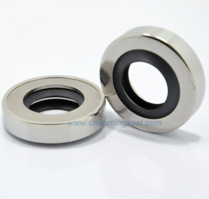 Automobile Crankshaft Oil Seals With PTFE Sealing Lip