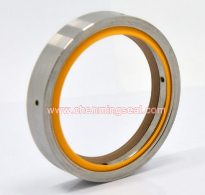 Customized PTFE Oil Seal For Vaccum Pumps Rotary Shaft Oil Seal