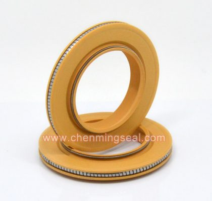 Polyimid Spring Energized Seal PTFE Lip Seal