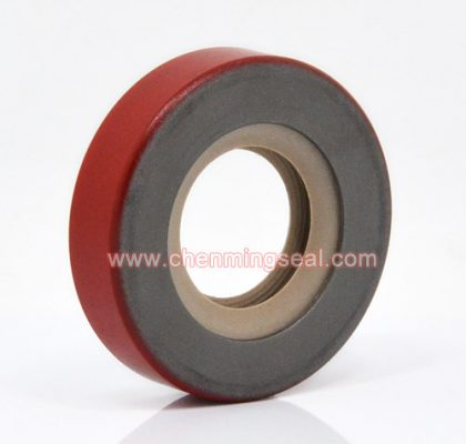 Customized Painted PTFE Oil Seal CDL Type