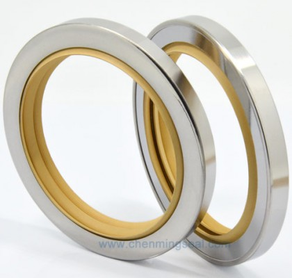 Triple Lip PTFE Oil Seal Stainless Steel Housing for oilless application