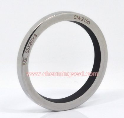 Spring Engergized Single Lip PTFE Oil Seal shaft runout 0.5mm or abrasive media