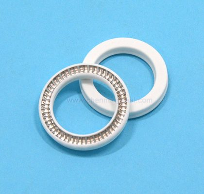 Spring Energized Seal FDA Grade PTFE Rod & Piston Seal -URS